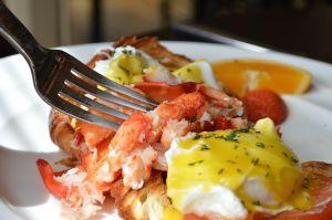 lobster-1615616__480